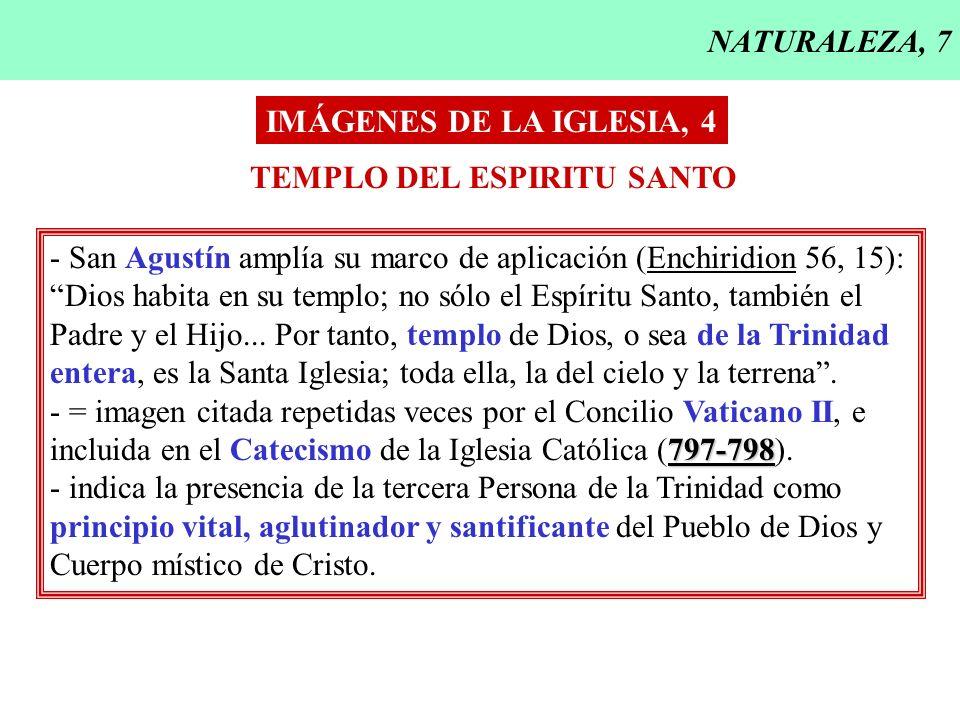 NATURALEZA, 7 IMÁGENES DE LA IGLESIA, 4. TEMPLO DEL ESPIRITU SANTO. - San Agustín amplía su marco de aplicación (Enchiridion 56, 15):