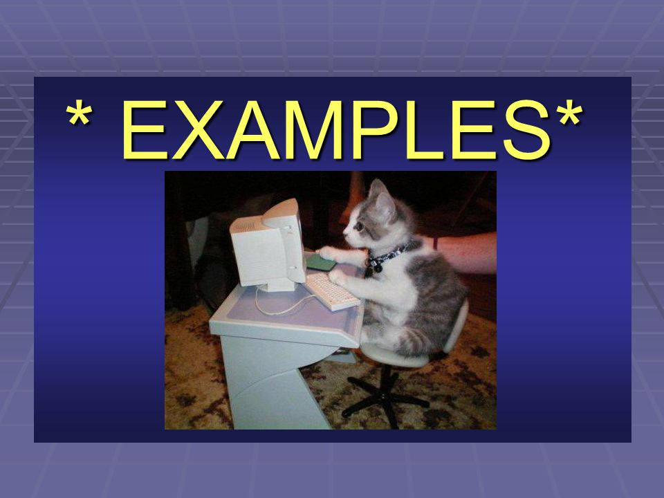 * EXAMPLES*