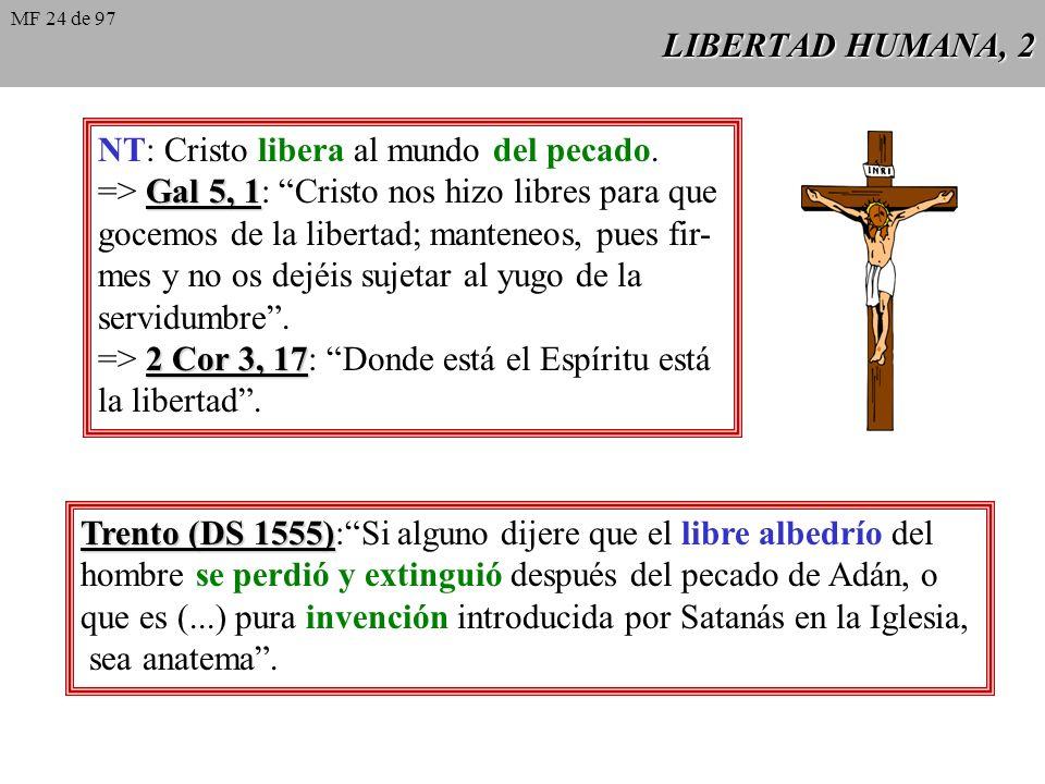 NT: Cristo libera al mundo del pecado.