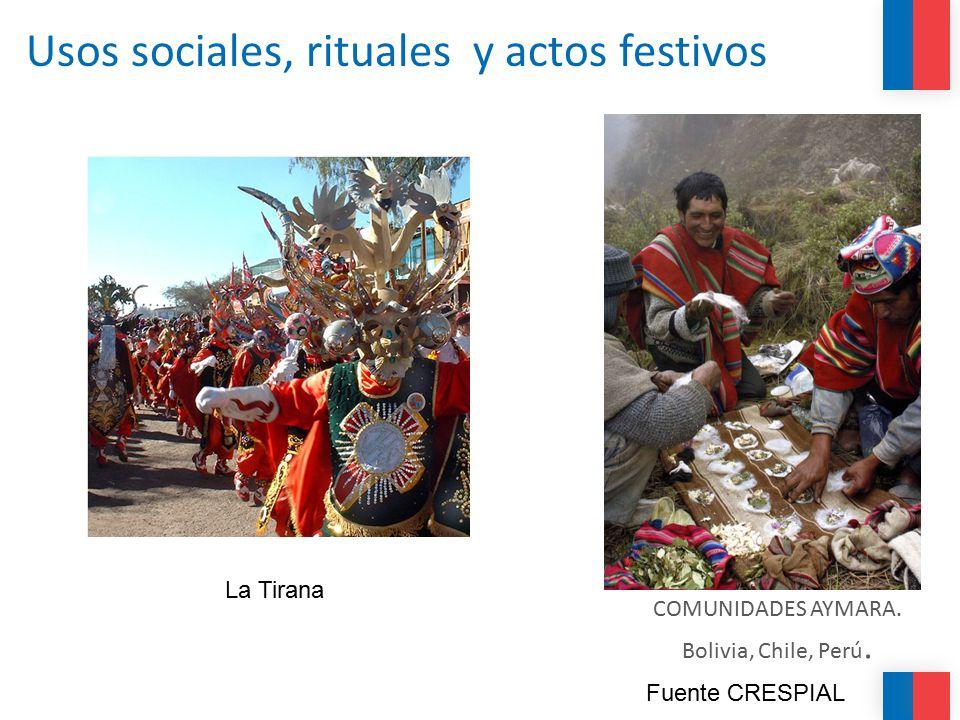 Usos sociales, rituales y actos festivos