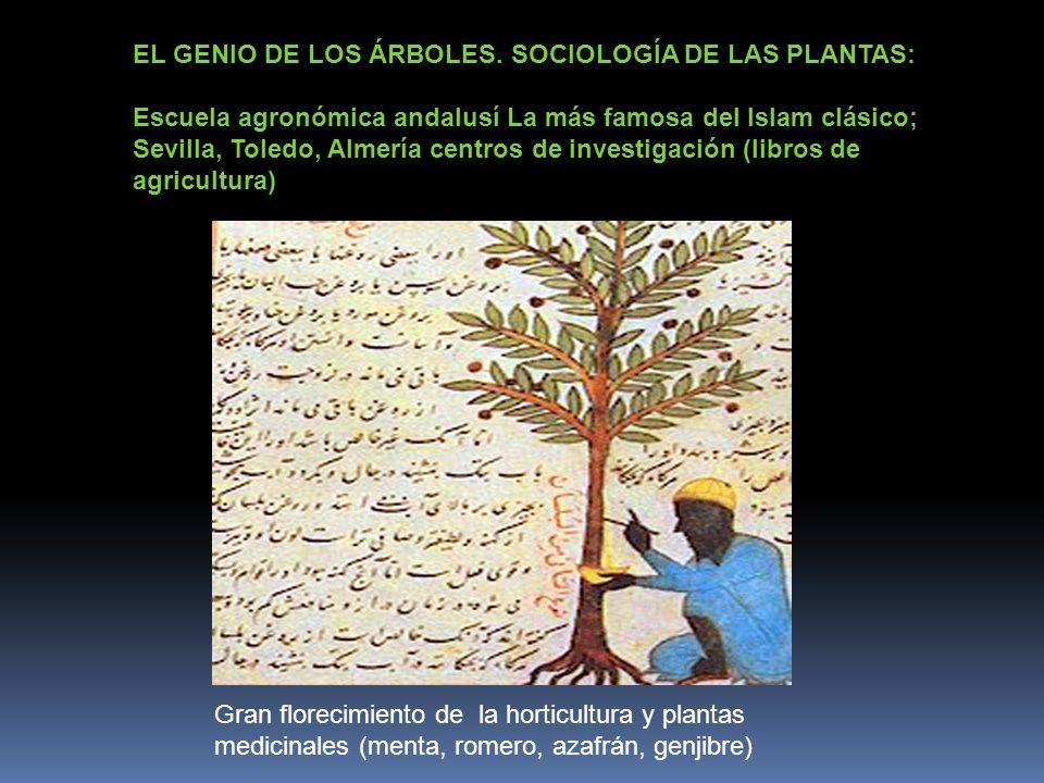 EL GENIO DE LOS ÁRBOLES. SOCIOLOGÍA DE LAS PLANTAS: