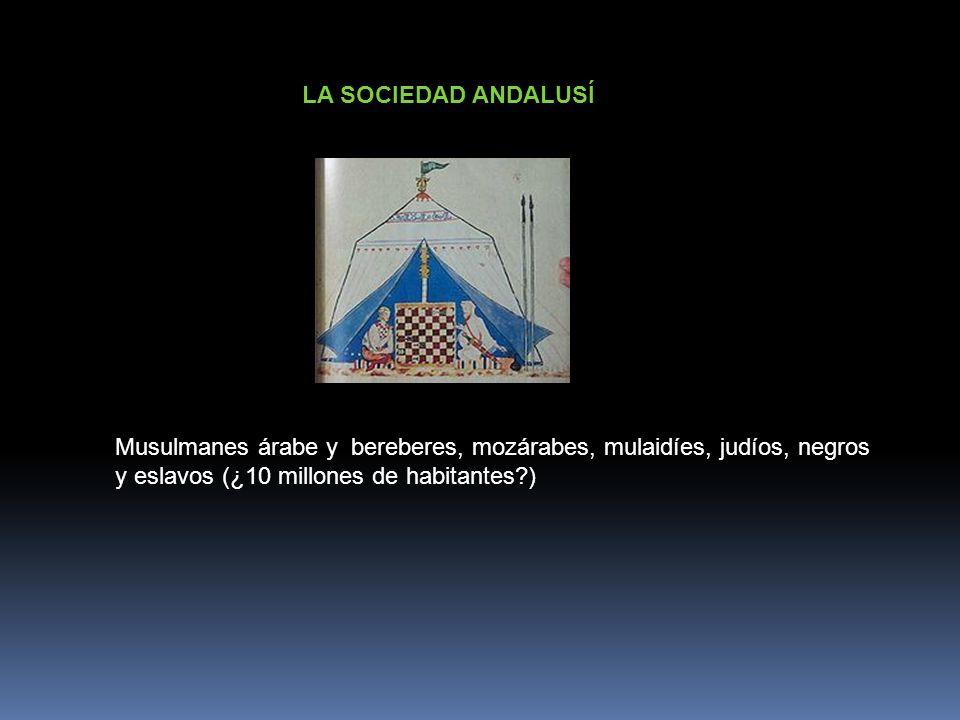 LA SOCIEDAD ANDALUSÍMusulmanes árabe y bereberes, mozárabes, mulaidíes, judíos, negros.