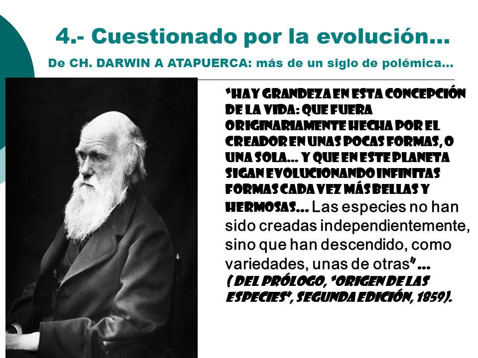 4.- Cuestionado por la evolución…