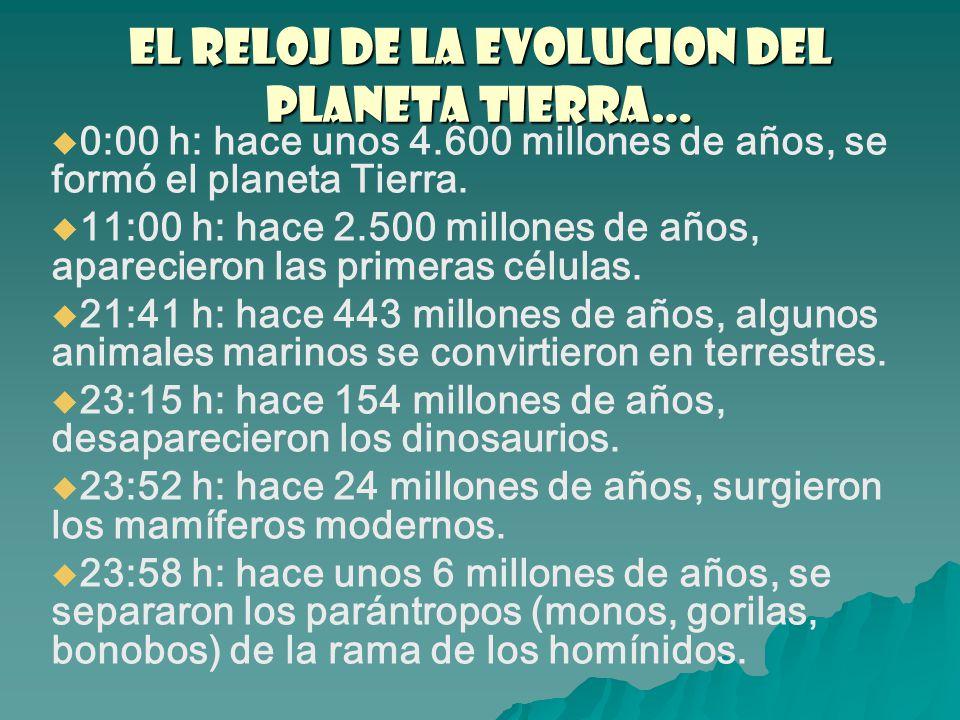 EL RELOJ DE LA EVOLUCION del PLANETA TIERRA…