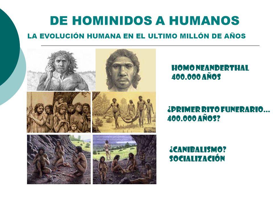 DE HOMINIDOS A HUMANOS HOMO NEANDERTHAL 400.000 AÑOS