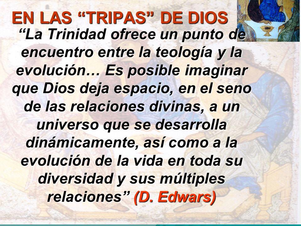 EN LAS TRIPAS DE DIOS