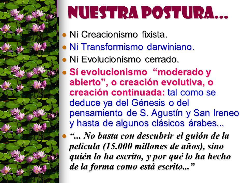 Nuestra postura... Ni Creacionismo fixista.