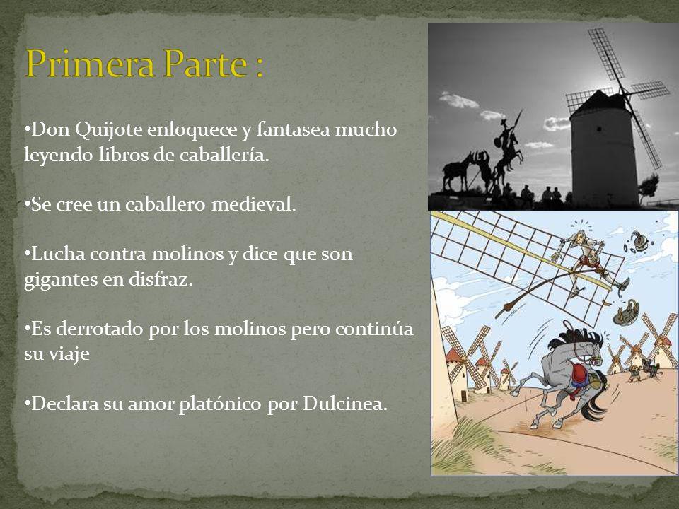 Primera Parte : Don Quijote enloquece y fantasea mucho leyendo libros de caballería. Se cree un caballero medieval.
