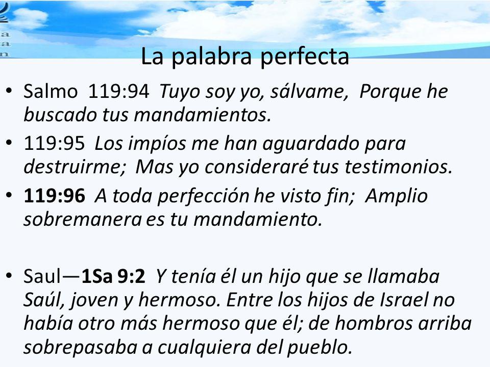 La palabra perfecta Salmo 119:94 Tuyo soy yo, sálvame, Porque he buscado tus mandamientos.