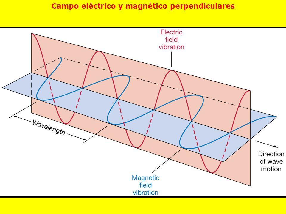 Campo eléctrico y magnético perpendiculares