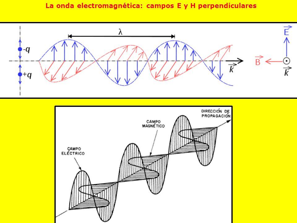 La onda electromagnética: campos E y H perpendiculares