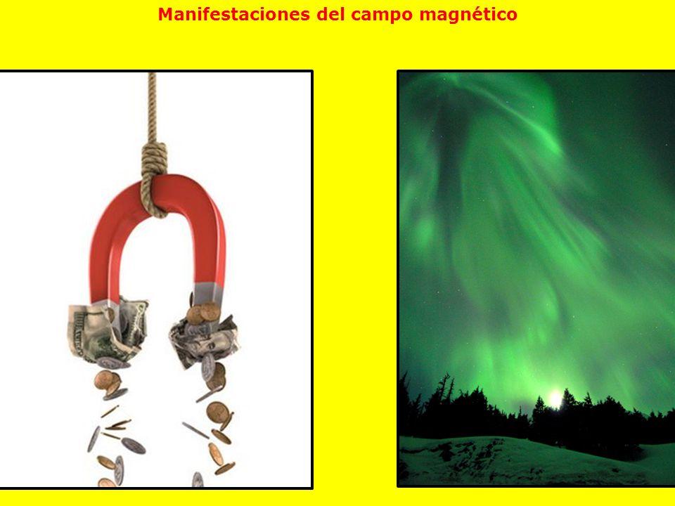 Manifestaciones del campo magnético
