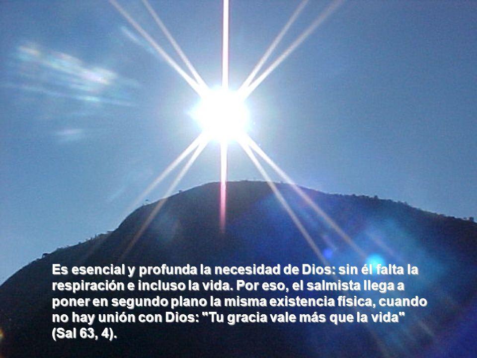 Es esencial y profunda la necesidad de Dios: sin él falta la respiración e incluso la vida.