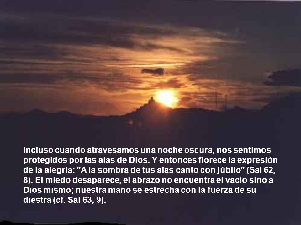 Incluso cuando atravesamos una noche oscura, nos sentimos protegidos por las alas de Dios.