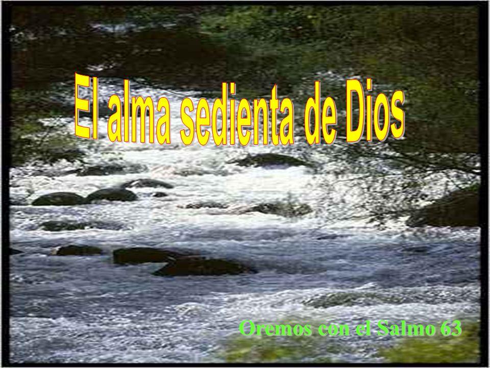 El alma sedienta de Dios