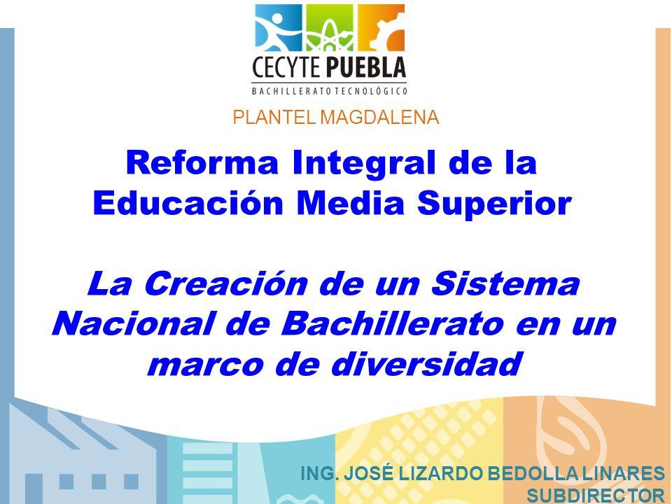 PLANTEL MAGDALENA Reforma Integral de la Educación Media Superior La Creación de un Sistema Nacional de Bachillerato en un marco de diversidad.