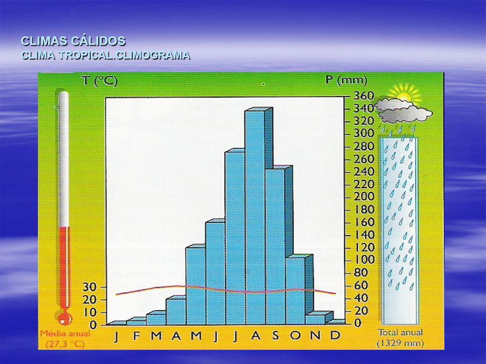 CLIMAS CÁLIDOS CLIMA TROPICAL.CLIMOGRAMA