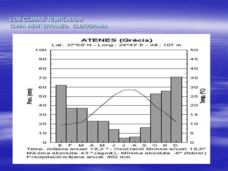 LOS CLIMAS TEMPLADOS CLIMA MEDITERRÁNEO. CLIMOGRAMA