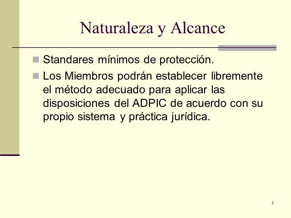Naturaleza y Alcance Standares mínimos de protección.