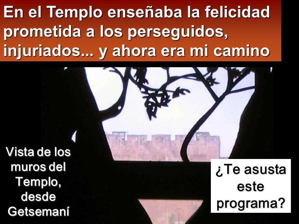 En el Templo enseñaba la felicidad prometida a los perseguidos, injuriados... y ahora era mi camino
