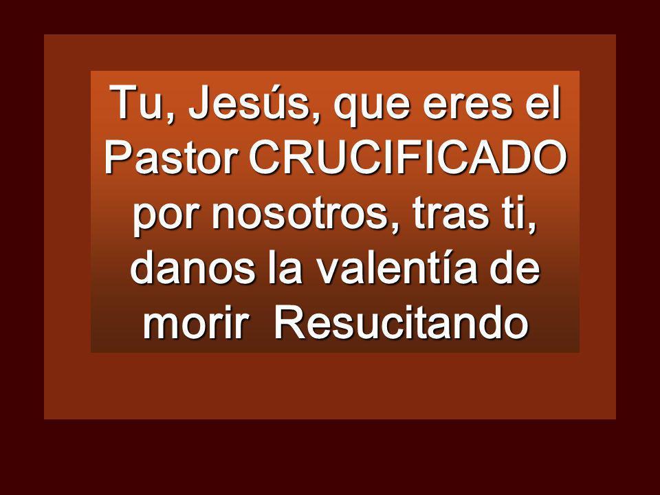 Tu, Jesús, que eres el Pastor CRUCIFICADO por nosotros, tras ti, danos la valentía de morir Resucitando