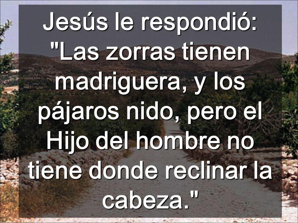 Jesús le respondió: Las zorras tienen madriguera, y los pájaros nido, pero el Hijo del hombre no tiene donde reclinar la cabeza.