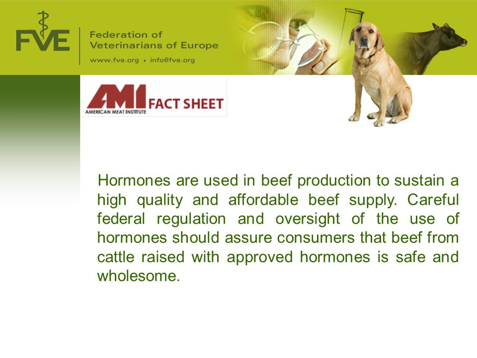 Hormones are used in beef production to sustain a high quality and affordable beef supply. Careful federal regulation and oversight of the use of hormones should assure consumers that beef from cattle raised with approved hormones is safe and wholesome.