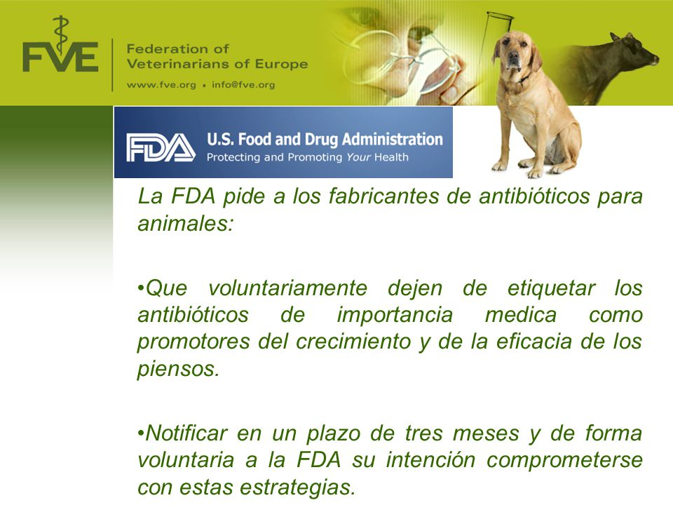 La FDA pide a los fabricantes de antibióticos para animales: