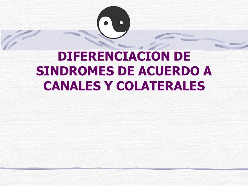 DIFERENCIACION DE SINDROMES DE ACUERDO A CANALES Y COLATERALES