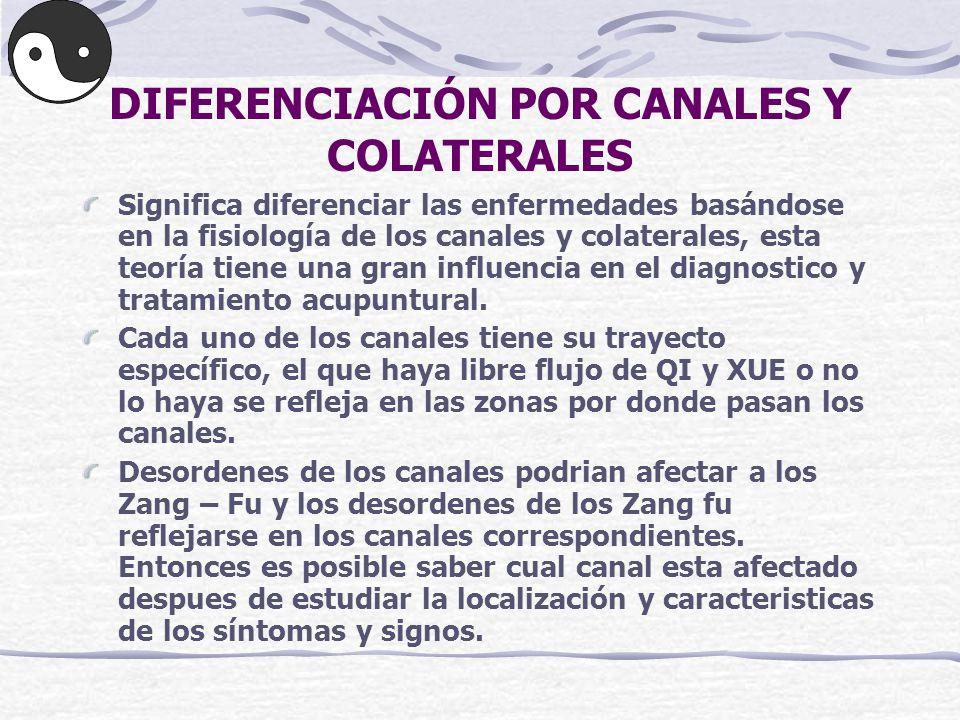 DIFERENCIACIÓN POR CANALES Y COLATERALES