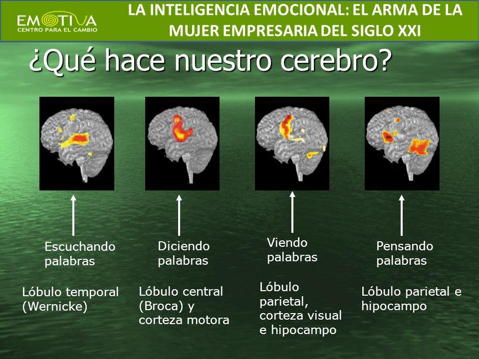 ¿Qué hace nuestro cerebro