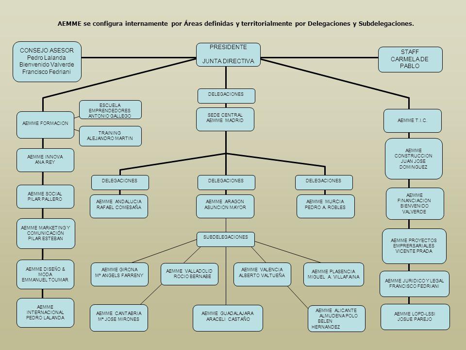 AEMME se configura internamente por Áreas definidas y territorialmente por Delegaciones y Subdelegaciones.