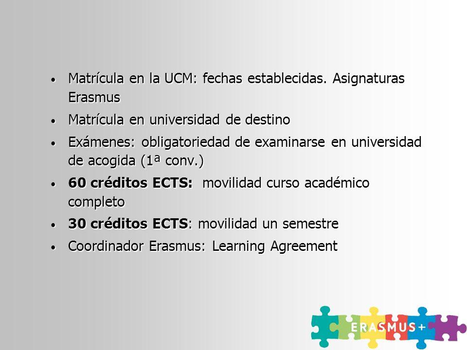 Matrícula en la UCM: fechas establecidas. Asignaturas Erasmus