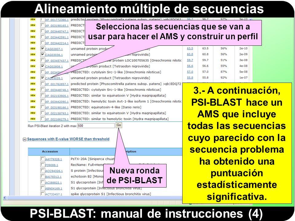 Nueva ronda de PSI-BLAST