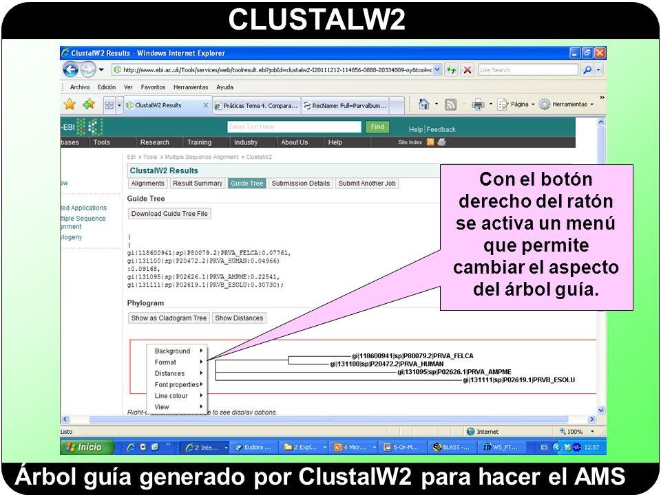 Árbol guía generado por ClustalW2 para hacer el AMS