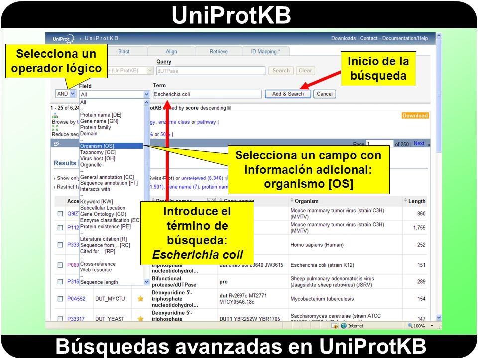 Búsquedas avanzadas en UniProtKB