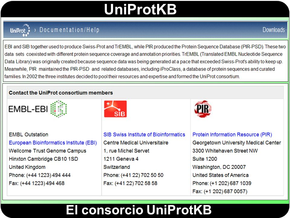 El consorcio UniProtKB