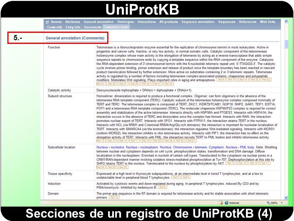 Secciones de un registro de UniProtKB (4)