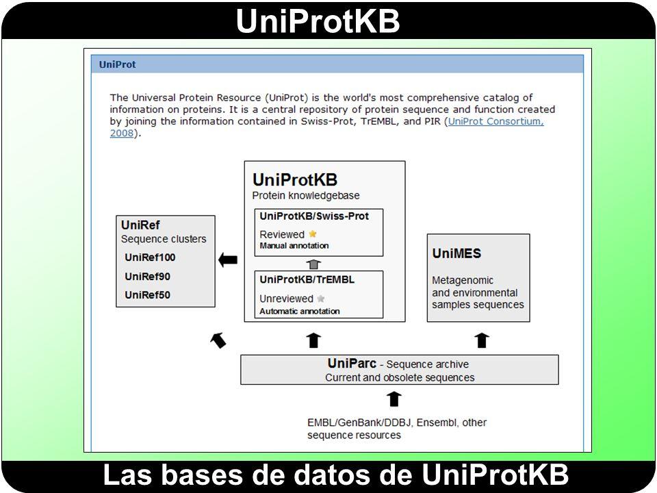 Las bases de datos de UniProtKB