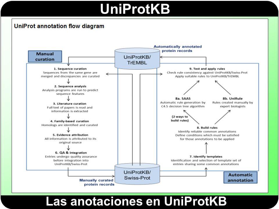 Las anotaciones en UniProtKB