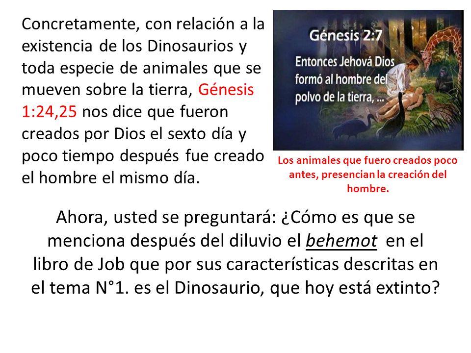 Concretamente, con relación a la existencia de los Dinosaurios y toda especie de animales que se mueven sobre la tierra, Génesis 1:24,25 nos dice que fueron creados por Dios el sexto día y poco tiempo después fue creado el hombre el mismo día.