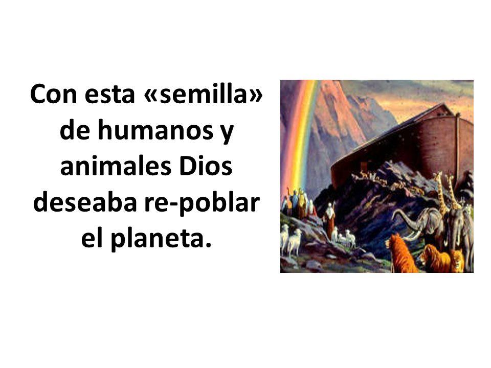 Con esta «semilla» de humanos y animales Dios deseaba re-poblar el planeta.