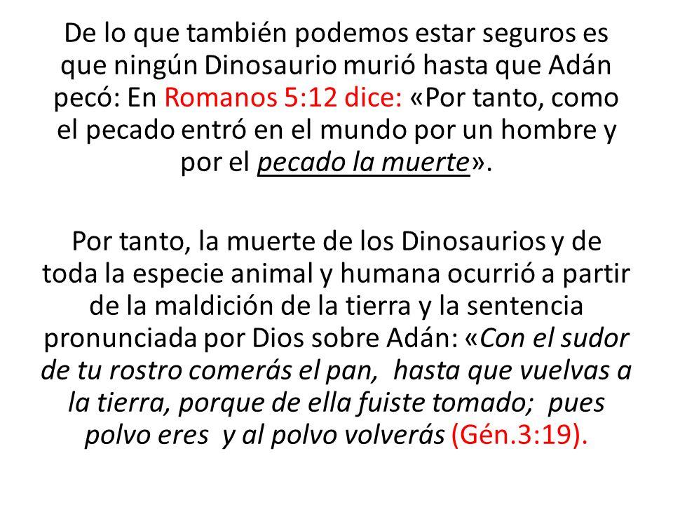 De lo que también podemos estar seguros es que ningún Dinosaurio murió hasta que Adán pecó: En Romanos 5:12 dice: «Por tanto, como el pecado entró en el mundo por un hombre y por el pecado la muerte».