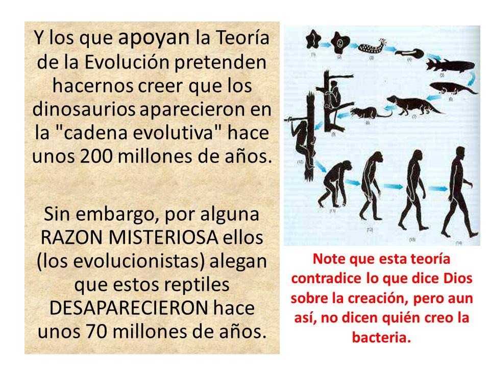 Y los que apoyan la Teoría de la Evolución pretenden hacernos creer que los dinosaurios aparecieron en la cadena evolutiva hace unos 200 millones de años.
