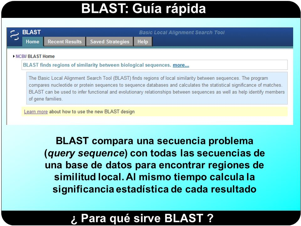 BLAST compara una secuencia problema (query sequence) con todas las secuencias de una base de datos para encontrar regiones de similitud local. Al mismo tiempo calcula la significancia estadística de cada resultado