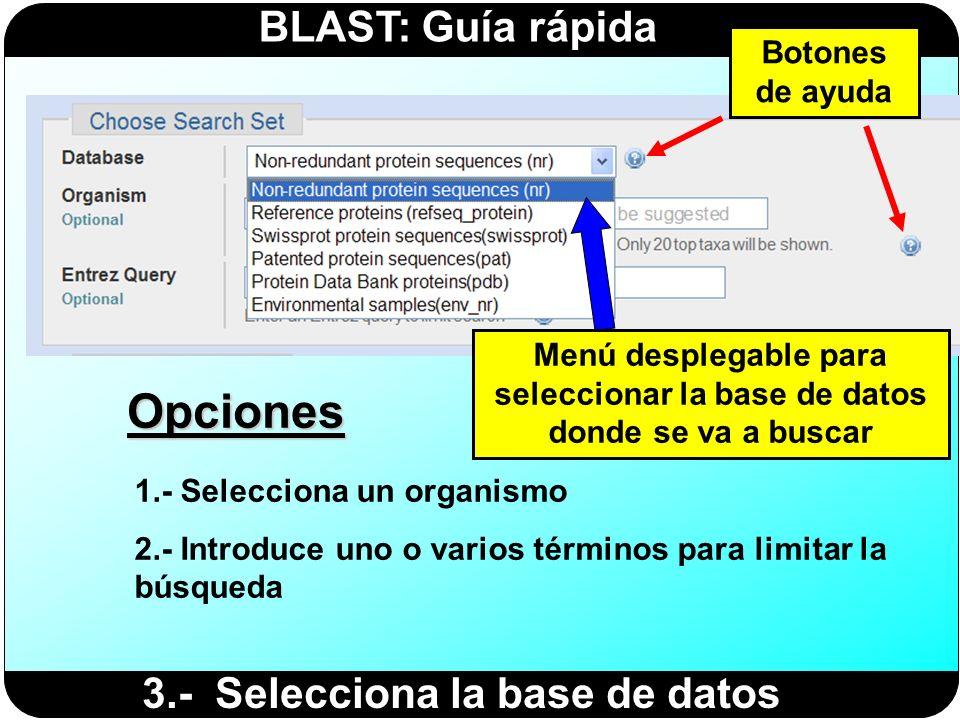 Opciones 3.- Selecciona la base de datos Botones de ayuda