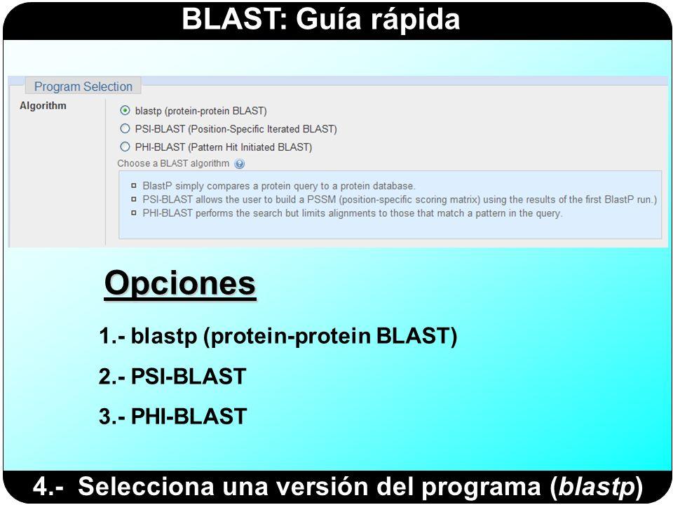 Opciones 4.- Selecciona una versión del programa (blastp)