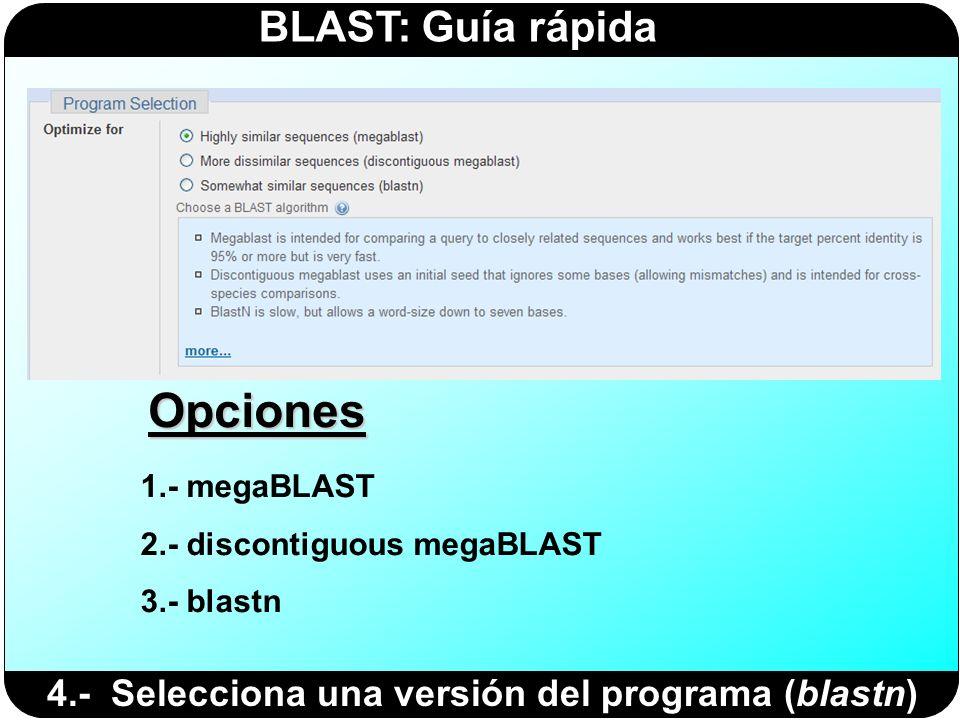 Opciones 4.- Selecciona una versión del programa (blastn)