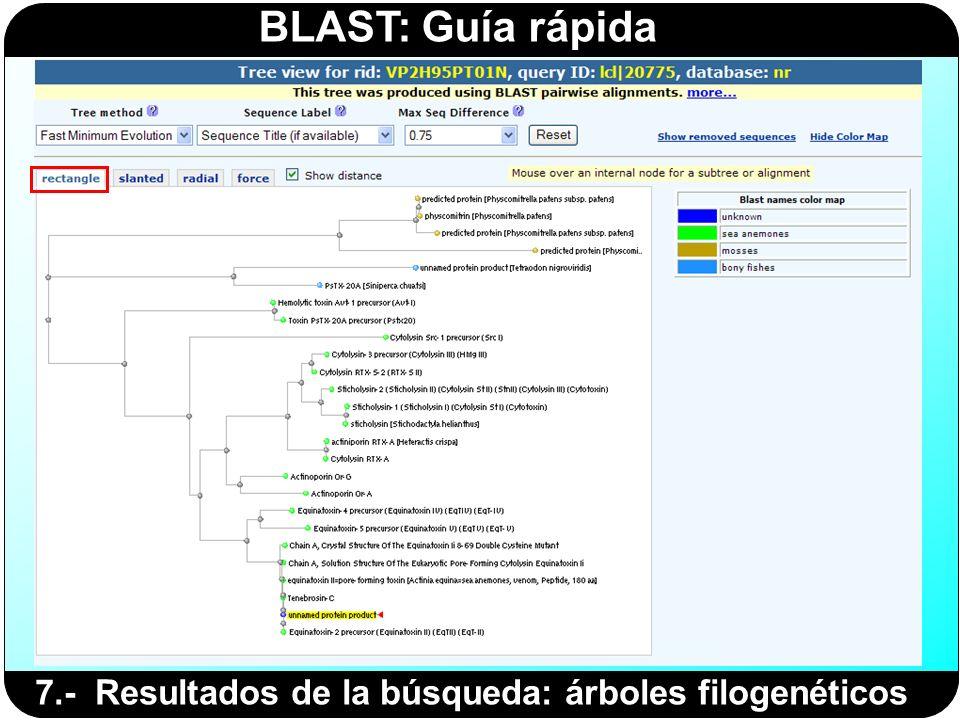 7.- Resultados de la búsqueda: árboles filogenéticos