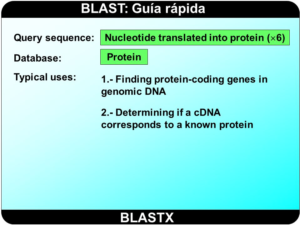Nucleotide translated into protein (6)